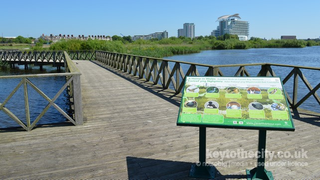 Cardiff Bay Wetlands Reserve